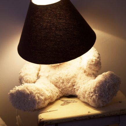 Lighting Teddy DIY
