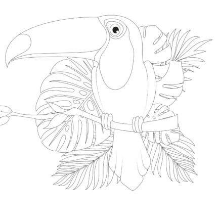 coloriage le Toucan du touquet tropical